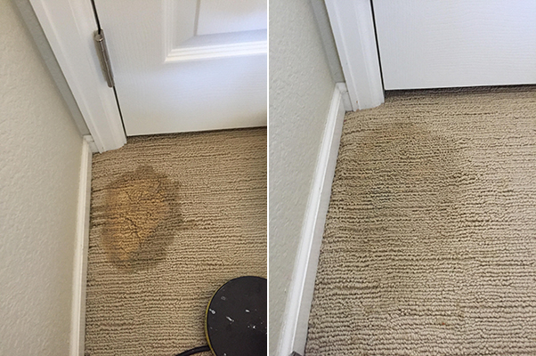 Kitchen and bathroom cleaners can leave different spots on your carpet depending on the product and carpet colour. We can fix blue, purple, yellow, ...